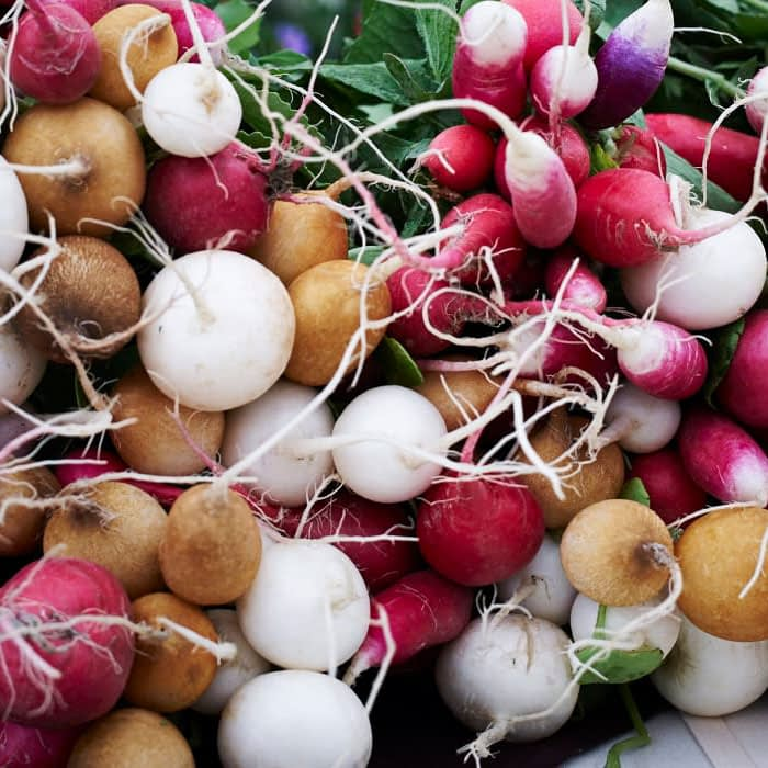 colorful radishes from the farmtruck